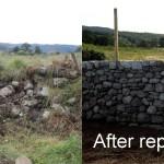 Dry stone retaining wall repair