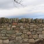 Random image: Dry stone field dyke