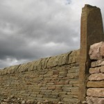 Random image: Standing stone