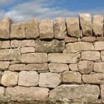 Random image: Tarradale sandstone
