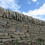 Dry stone wall dressed cope