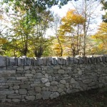 Random image: Dry stone dyke