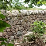 Dry stone wall on garden side of boundary
