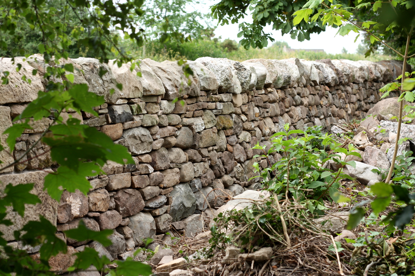 Dry Stone Wall On Garden Side Of Boundary Highland